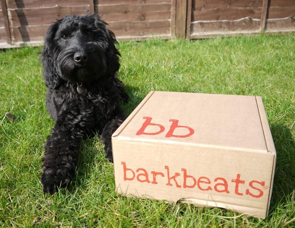 barkbeats-box