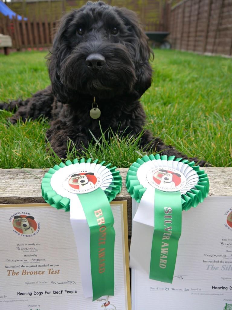 berkley-awards