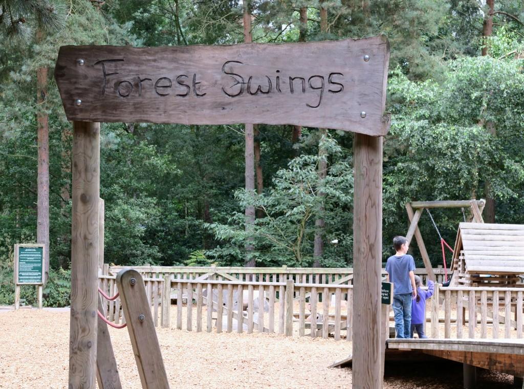 sherwood-forest-park-forest