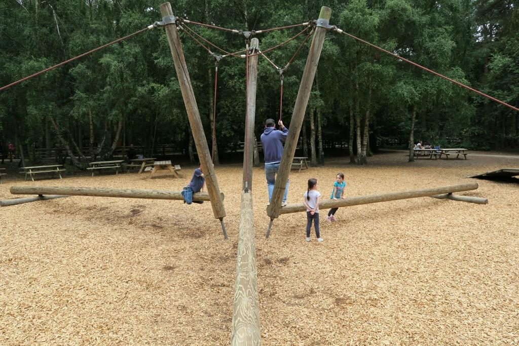 sherwood-forest-park-forest-poles