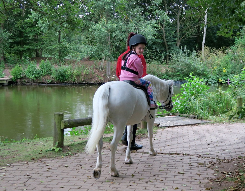 sherwood-forest-pony-ride-riding-1