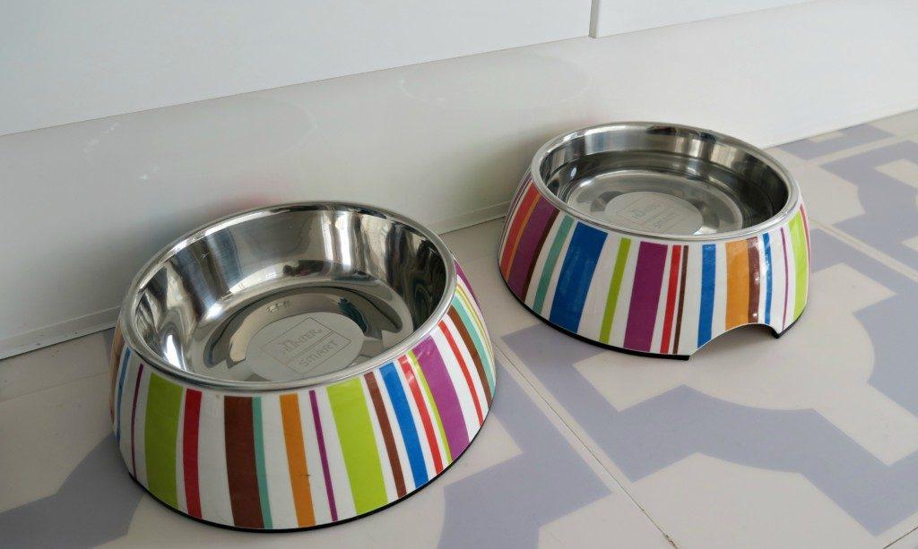 hunter-dog-bowls