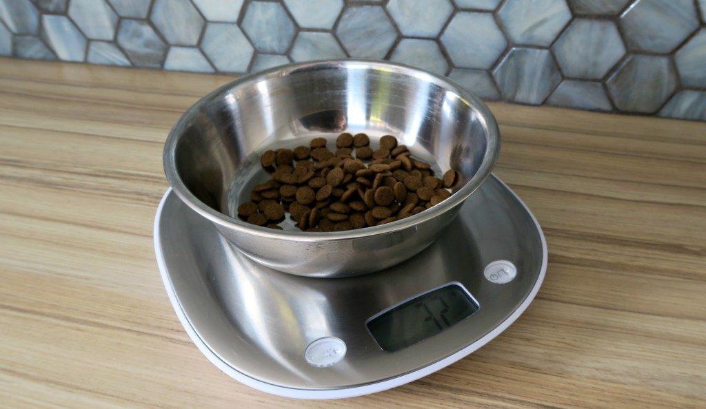 Terraillons-Macaron-Scales-2