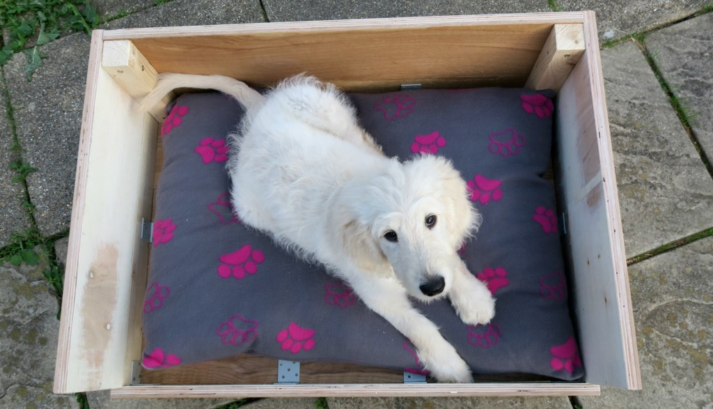 how-to-make-a-dog-bed-from-flooring-1