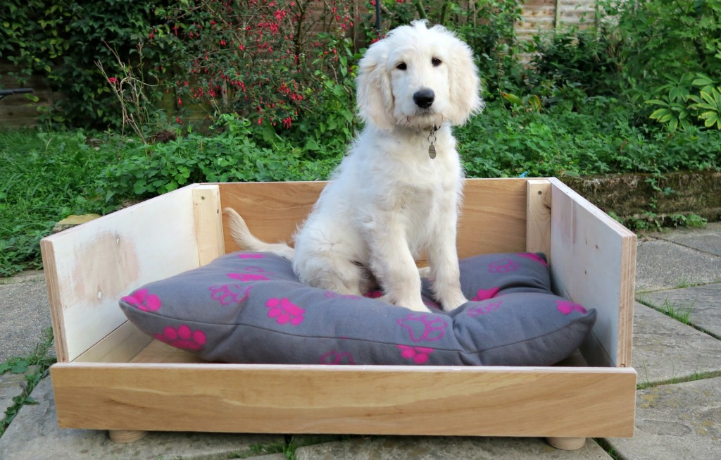 how-to-make-a-dog-bed-from-flooring