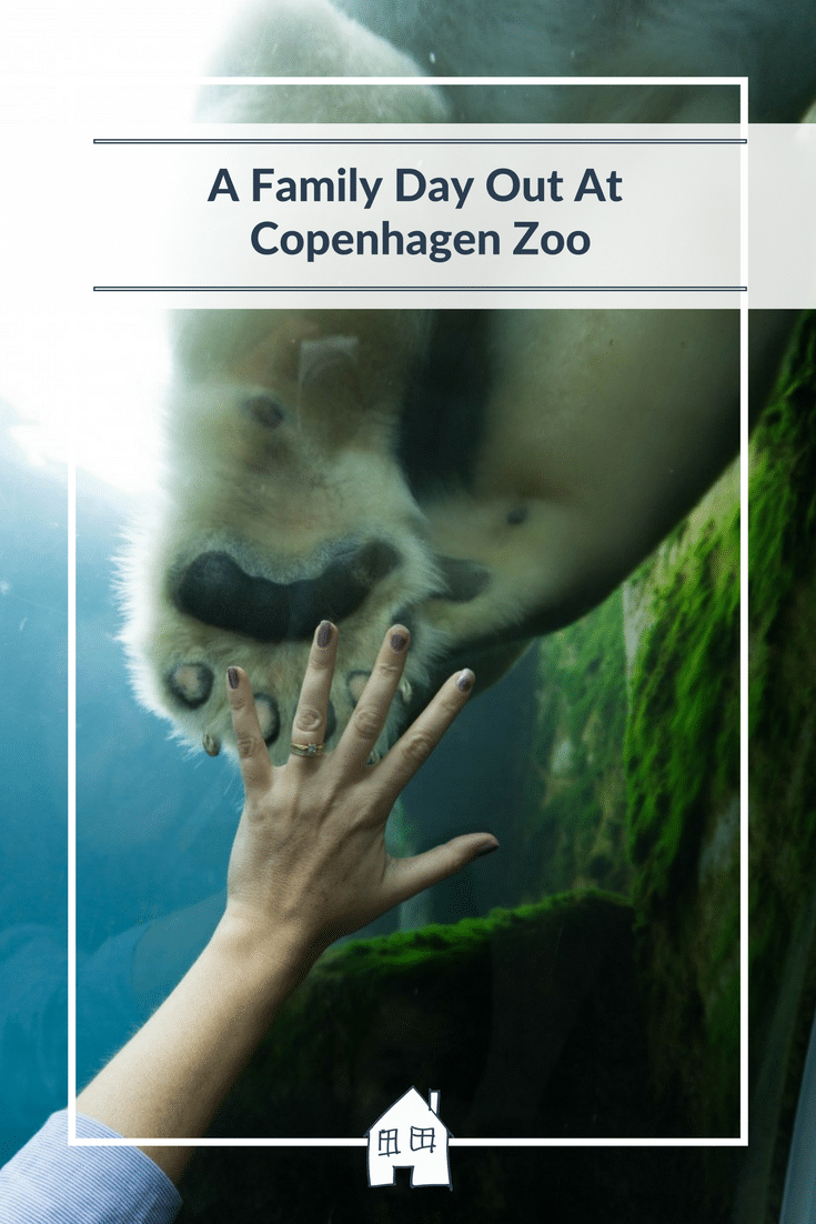 Looking at visiting Copenhagen, then have a look at our day out at Copenhagen Zoo. We had a family day out together, and the highlight of Copenhagen Zoo was seeing the Polar Bear