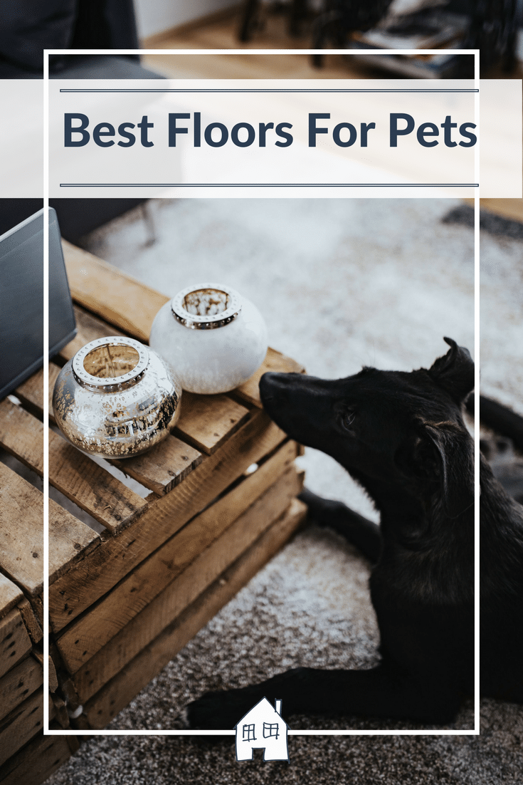 having a pet means lots of mess and extra foot fall, so take a look at the recommended flooring for pets, flooring for dogs, hard wearing flooring