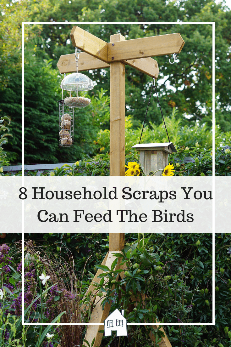 household scraps you can feed the birds. feed the birds with household scraps to make it a cheap way to feed the birds. bird feeders are a great way to encourage the birds into the garden